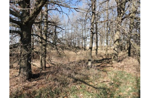 10 Acres County Road Cw, Watertown, WI 53098