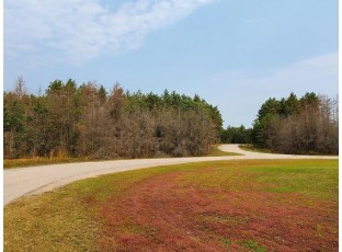 Lot 17 W 16th Ct Arkdale, WI 54613