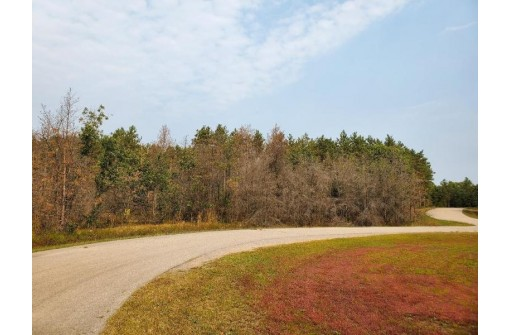 Lot 17 W 16th Ct, Arkdale, WI 54613