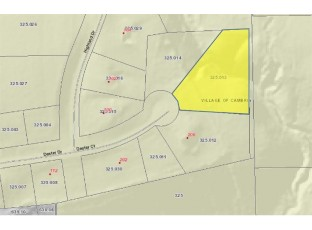 Lot 13 Dexter Ct Cambria, WI 53923