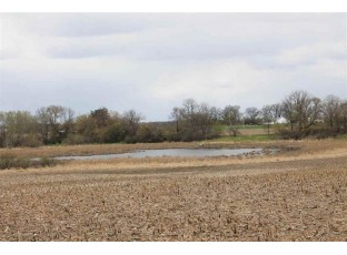 40 Ac County Road S Markesan, WI 53946