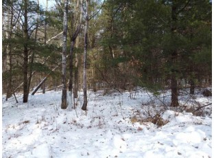 Lot 19 Fur Ct Wisconsin Dells, WI 53965
