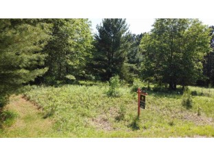 Lots 52 & 53 S Fur Ct Wisconsin Dells, WI 53965