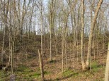 LOT 4 Bob-O-Link Ct La Valle, WI 53941