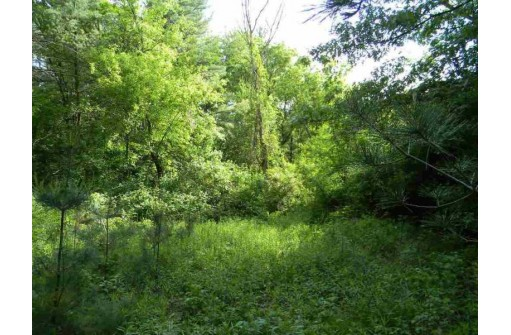L23 Deer Run Ridge, Wisconsin Dells, WI 53965