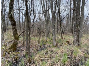 40 ACRES Dragonfly Rd Warrens, WI 54666