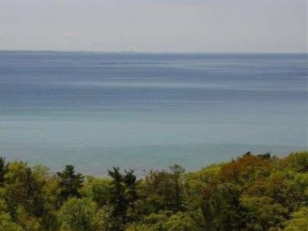Lower Shore Drive Harbor Springs, MI 49740