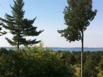 5870 Lodgepole Harbor Springs, MI 49740