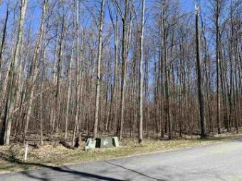 Lot 38 Troon South Bellaire, MI 49615