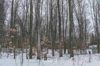 Lot 1 Fawn Run Harbor Springs, MI 49740