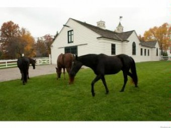 2670 Turtle Lake Bloomfield Hills, MI 48302