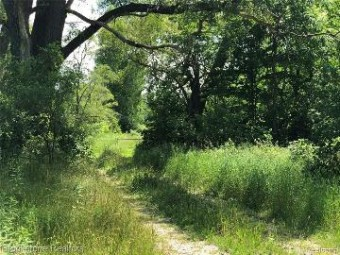 0 26 Mile Road Shelby Township, MI 48316