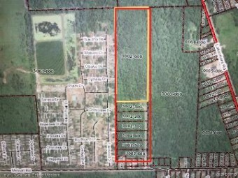 Tbd Metcalf Lot 3002-500 Rd Lakeport, MI 48059