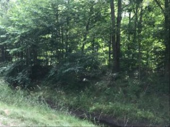 0 152nd Avenue Lot 2 West Olive, MI 49460