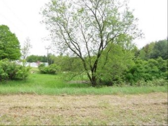 Lot White Pine Lane Evart, MI 49631