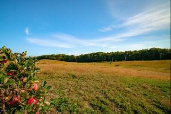 Vineyard View Road Lot #18 Manistee, MI 49660
