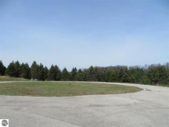 4 Spruce Hollow Trace Fife Lake, MI 49633