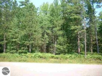 000 Loffman Woods Road East Tawas, MI 48730