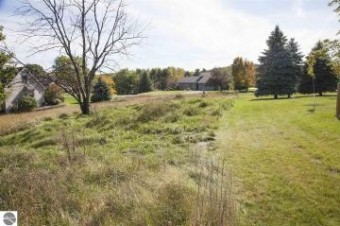 3130 Scenic Hills Drive Williamsburg, MI 49690