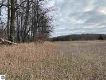 Lot 32 Troon North Bellaire, MI 49615