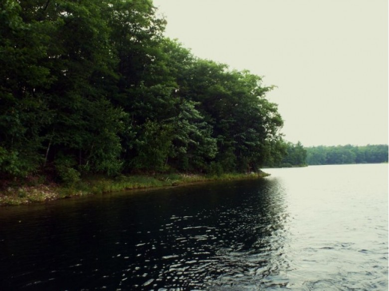 LOT 3 Lake Mildred Rd, Newbold, WI by First Weber Real Estate $199,900