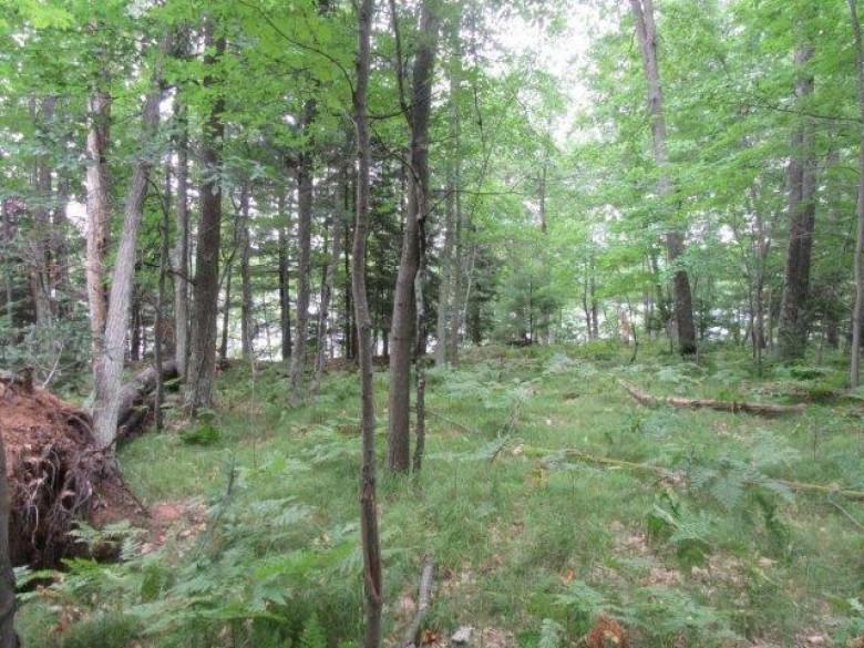 On Marsha Ln Lot 14, Arbor Vitae, WI by Re/Max Property Pros-Minocqua $64,300