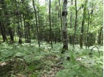 OFF Sheep Ranch Rd, Cassian, WI by First Weber Real Estate $49,500