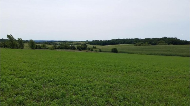 4.31 Ac County Road Nn, New Glarus, WI by Right Now Realty Llc $89,900