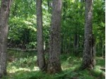 ON Ormes Rd LOT 1, Presque Isle, WI by Headwaters Real Estate $289,000