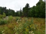 ON Thornapple Dr, Rhinelander, WI by Pine Point Realty $75,000