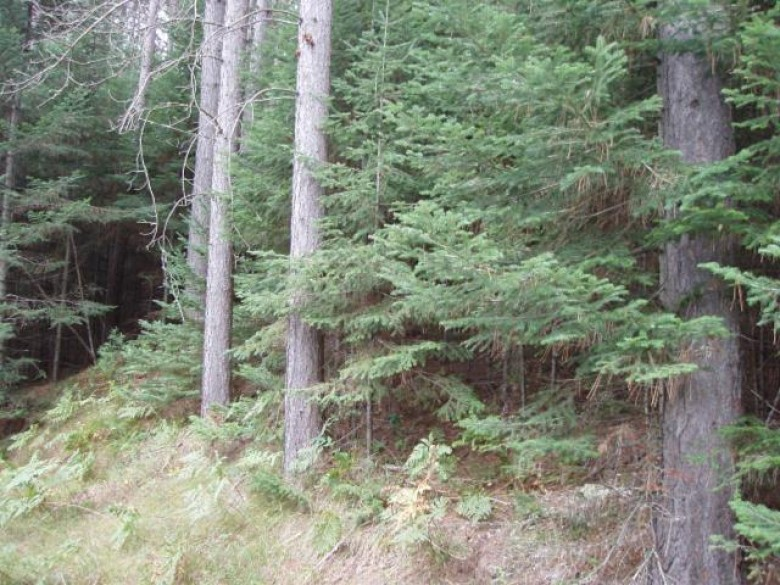 ON Pieper Rd, Shanagolden, WI by Birchland Realty, Inc - Park Falls $74,900