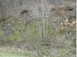 00 Hornby Hollow Rd, Viroqua, WI by Bill Brooke Realty $59,900
