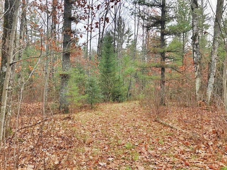 89 ACRES Barker Rd, Amberg, WI by Hanson Realty, Inc (wi/Mi) $159,900