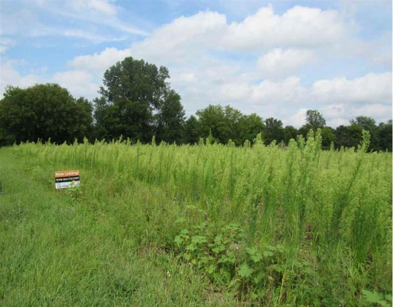 Leskey Street, Berlin, WI by First Weber Real Estate $39,980