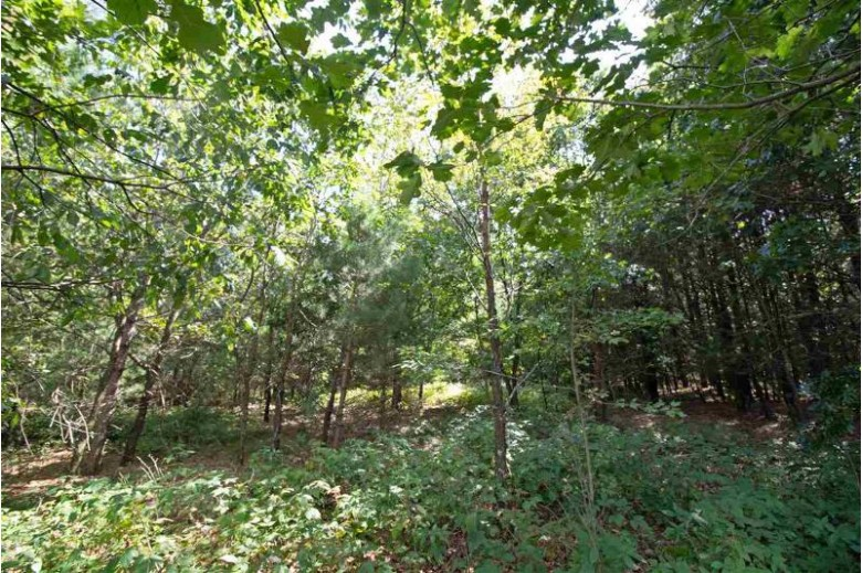 L5 White Pine Way, Spring Green, WI by Century 21 Affiliated $81,200
