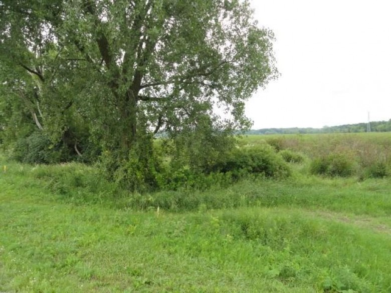 65 ACRES Mahoney Rd, McFarland, WI by First Weber Real Estate $349,900