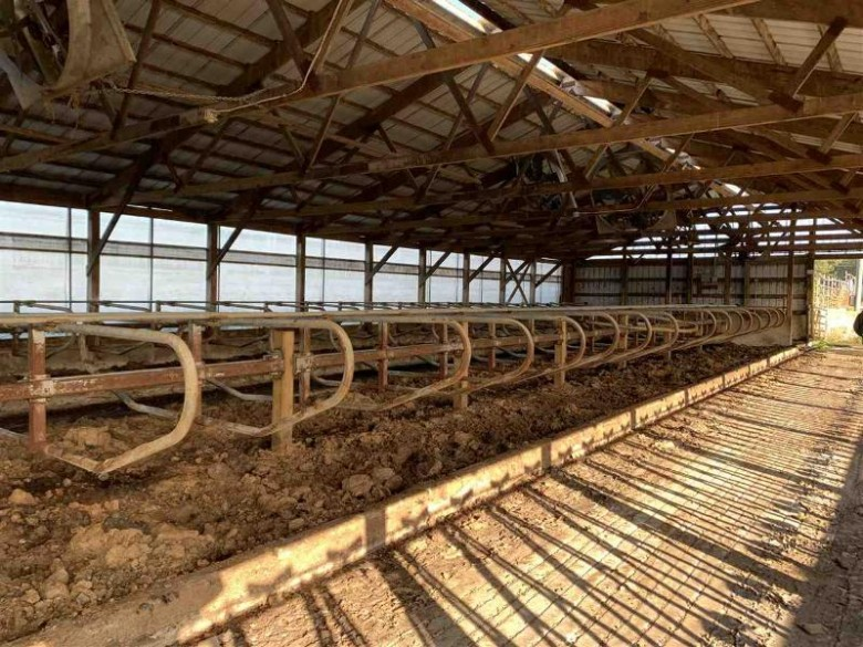 93.94 AC Hwy 12/16, Camp Douglas, WI by Gavin Brothers Auctioneers Llc $136,213
