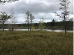 TBD Rice Lake Rd, Gwinn, MI by Re/Max 1st Realty $43,900
