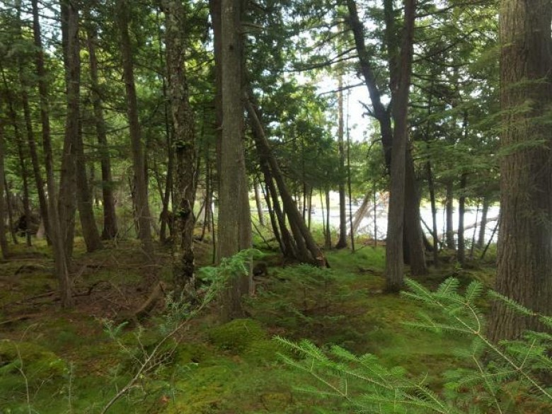 OFF Woodland Ln, Three Lakes, WI by Re/Max Property Pros $139,900