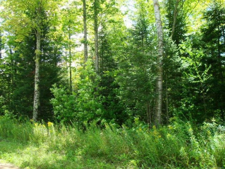 ON Hwy 29, Marathon County, WI by First Weber Real Estate $34,100