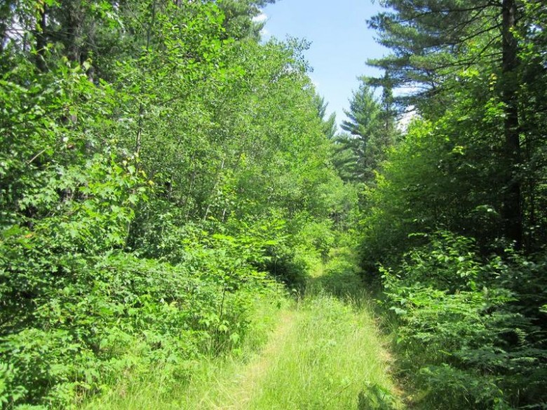 On Tall Pines Dr 9 Lots, Lac Du Flambeau, WI by Redman Realty Group, Llc $34,900