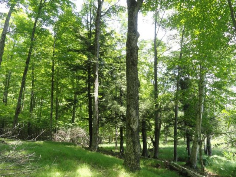Lots 6&7 Hillcrest Rd, Bradley, WI by Re/Max Property Pros - Tomahawk $59,900