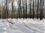 Berry Woods Trail, Silver Cliff, WI by First Weber Real Estate $88,000