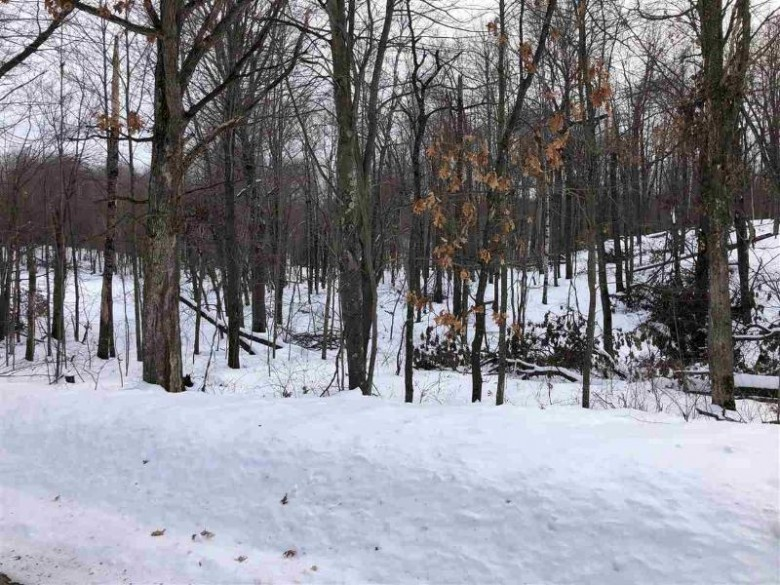 Pleasant Drive, Amherst, WI by Rieckmann Real Estate Group, Inc $79,900