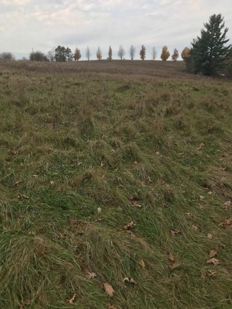 3.50 ac Lewis Rd, Mount Horeb, WI by First Weber Real Estate $145,000