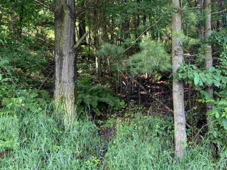 40.1 Ac Brown Church Dr, Lone Rock, WI by Gavin Brothers Auctioneers Llc $156,000