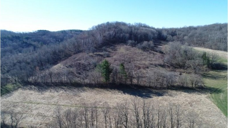 81 AC Hickory Hill Rd, Richland Center, WI by Wilkinson Auction & Realty Co. $300,000