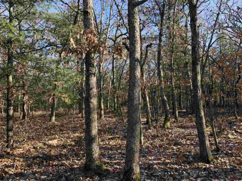 40 Ac 24th Ave, Mauston, WI by Whitetail Dreams Real Estate Llc $143,960