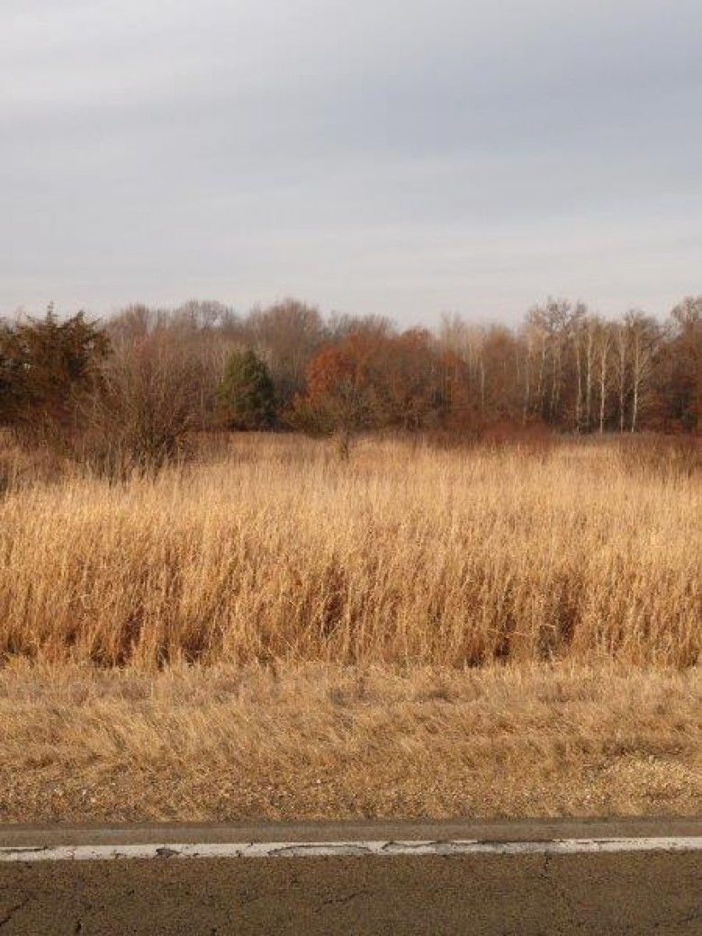 16.65 AC County Road P, Pardeeville, WI by Re/Max Connections $60,000
