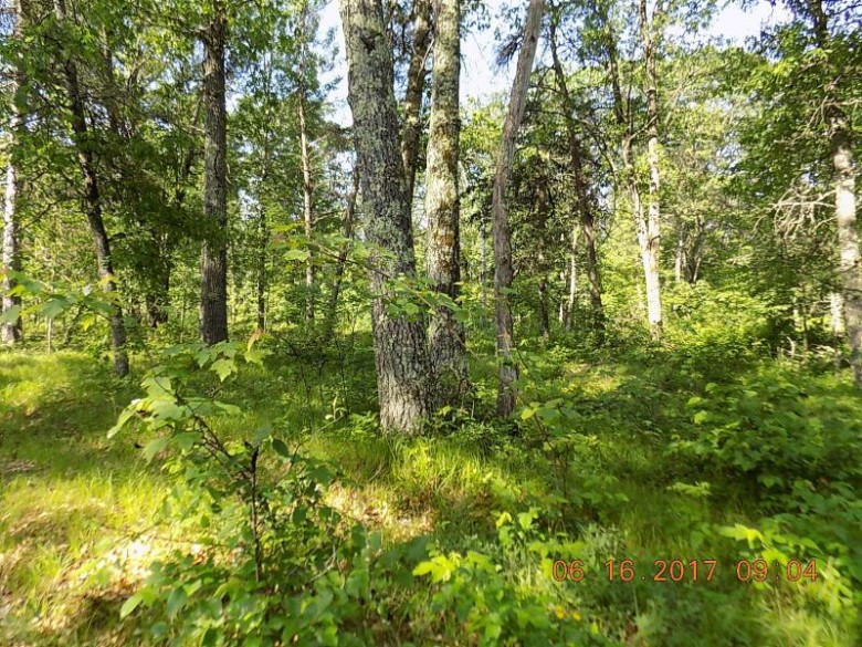 LT8 Crimson Ln, Pound, WI by Re/Max North Winds Realty, Llc $24,900
